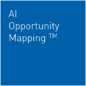ai-opportunity-mapping